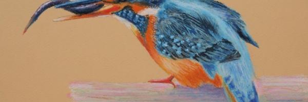 Tullie House museum workshop: Saturday 23rd June 2018