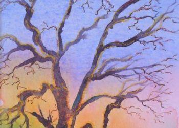Tree with sheep, Sarah Colgate ©