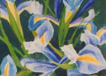 Irises, oil. Sarah Colgate ©