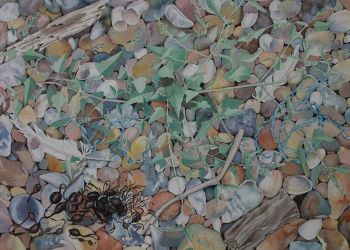 Coastal Shingle, acrylic ink, Sarah Colgate ©